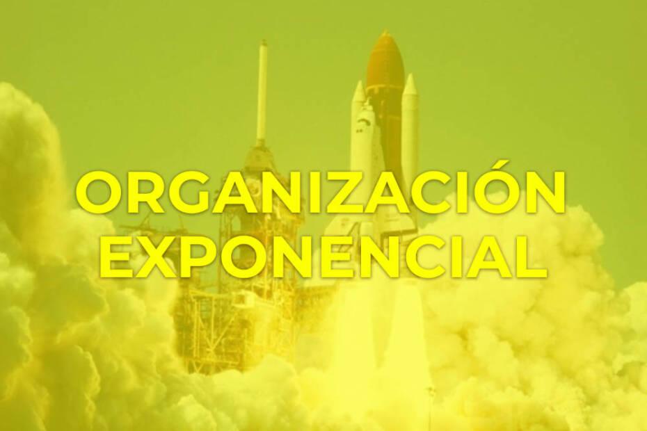 organizacion exponencial